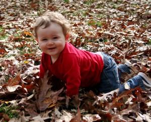 Leaf Crawling