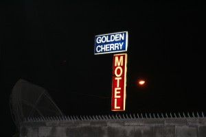 Golden Cherry.