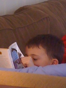 Rollie Reading The Lion, the Witch, and the Wardrobe
