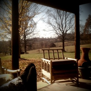 The view from the patio.