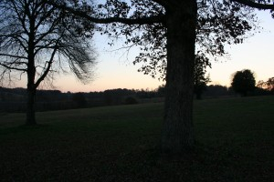 It is really hard to have any stress at all, sitting alone in the middle of a field at dusk.