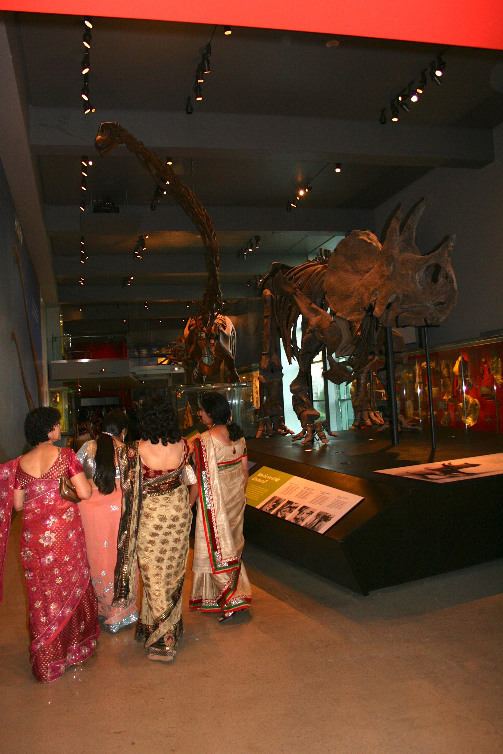 I just loved this photo. Beautiful women walking in a group amidst dinosaurs.